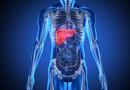 Ako prepoznate ovih 6 simptoma, vaša jetra je u problemu: Dr Ana Žikić upozorava, da li imate ove simptome?